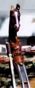 Tous leurs instruments de musique sont ornés d'une tête de cheval.