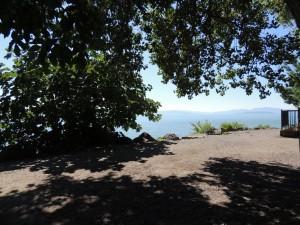 Un buon posto ombroso per riposarsi dopo una passeggiata al sole   -   23/07/2013