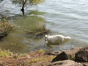 Aïka ritrova con piacere un accesso facile al lago.