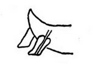 Schéma de l'arrière relevé des galères de l'Antiquité.
