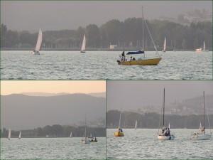 Le barche a vela dirigendosi verso l'Isola Maggiore.
