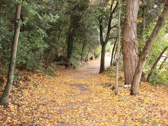 Occasions de belles promenades - Opportunità di belle passegiate.