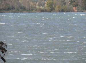 Les vagues ne cessèrent pas de galoper frénétiquement à la surface du Trasimène.