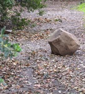 Et même un bloc de pierre qui a dévalé du versant abrupt...