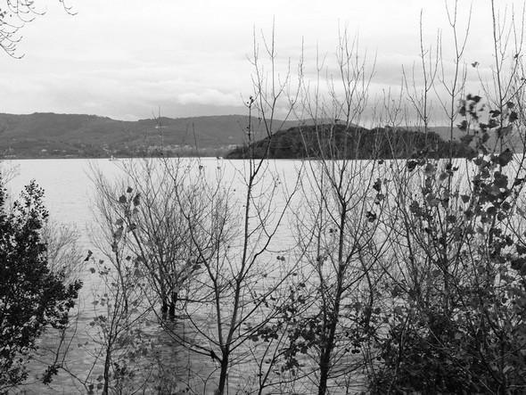 Dans ce même sentier, à hauteur des petits arbres pris par les eaux.