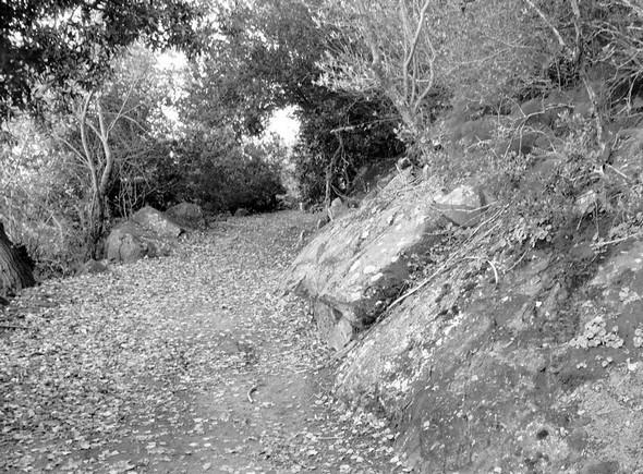 De gros rochers semblent garder le chemin du mystère...