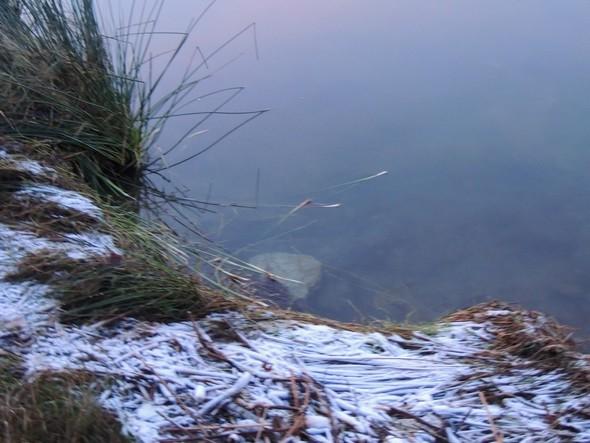 """Et cette """"neige"""" semblait même s'être déposée tout au bord du lac..."""