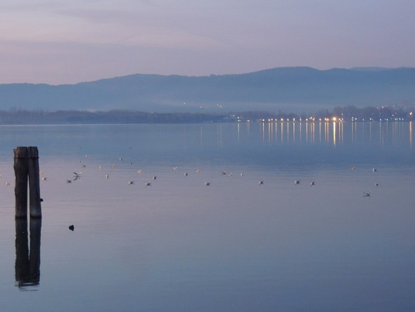 La rive nord-ouest du lac Trasimène et les lumières de Tuoro sul Trasimeno, vues du pontile de l'Isola Maggiore - 18/12/2013,    18:16.