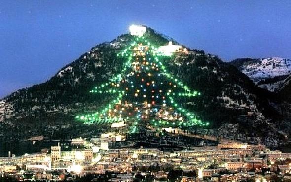le-plus-grand-arbre-de-noel-du-monde-2013