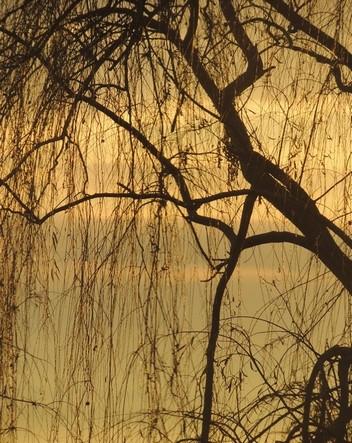 Très belles teintes, un peu ihabituelles pour un crépuscule au-dessus du lac Trasimène.