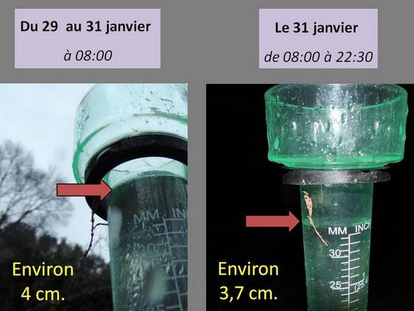 Notre pluviomètre à l'Isola Maggiore : pluies cumulées du 29 au 31 janvier à 08:00.