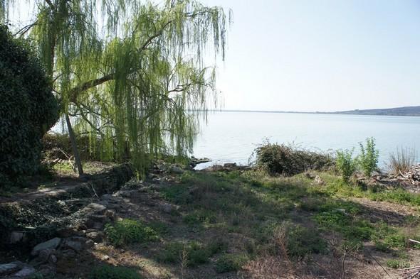 Mars 2012 : la rive du jardin est à sec.
