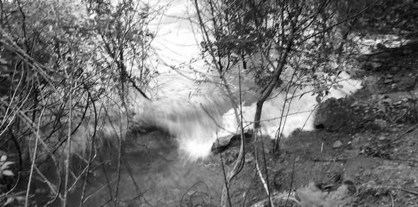 Rive du lungolago de l'Isola Maggiore, fustigée par un sirocco pourtant modéré   -   10/02/2014,  17:00