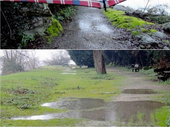 A la fin du sentier, nous débouchons sur l'esplanade herbeuse qui précède la petite plage de l'Isola Maggiore. Là non plus, l'eau de pluie ne manque pas !