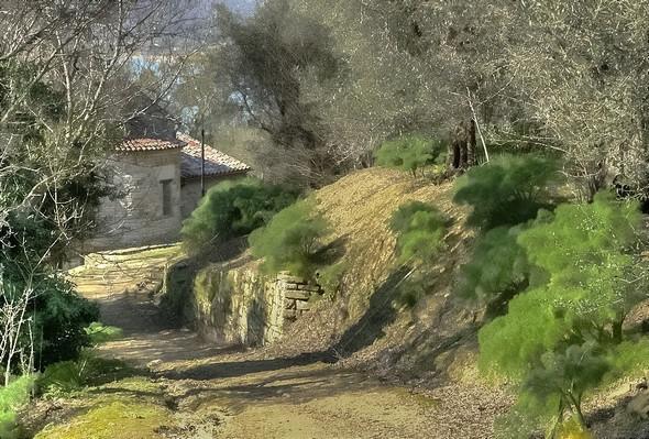 """La """"strada di San Salvatore"""" avec dans le fond de la photo le chevet de l'église de San Savatore (église romane du XII° siècel)."""