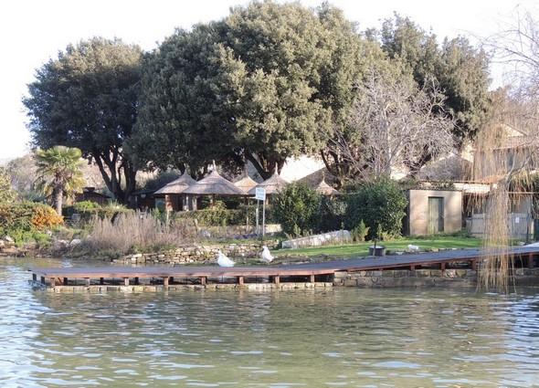 """La terrasse en bois qui prolonge dans le Trasimène le jardin du bar des Silvi.  -  Au fond les parasols en paille du """"Il Molo""""."""