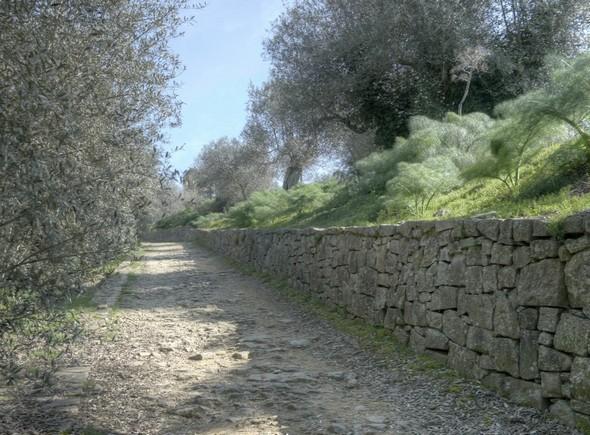 Quittée l'oliveraie, on arrive plus haut dans la strada di San Michele Arcangelo.