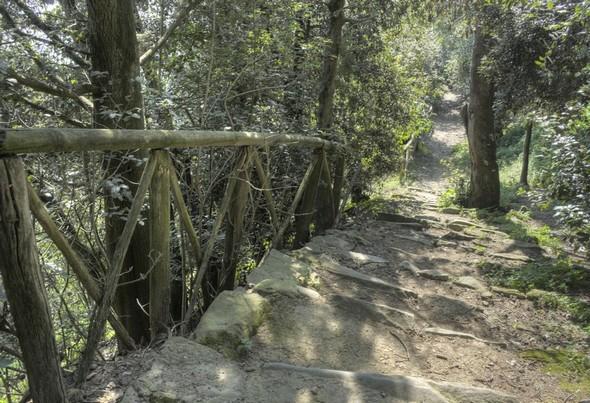 La stradi di San Francesco qui redescend vers le lac comprend un très bel escalier rustique et parcourt un versant plus boisé.