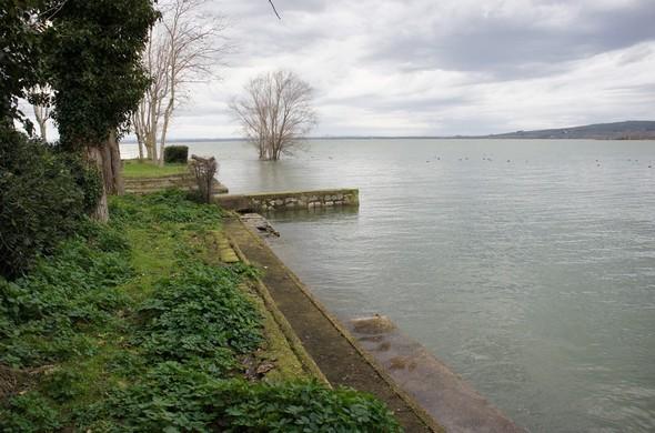 Vue d'ensemble de la rive au niveau de cette maison - Au fond, le bel arbre isolé dans les eaux du Trasimène et qui se dresse tel la figure de proue de l'Isola Maggiore...