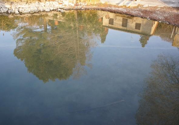 Dans l'eau calme de notre darse, reflet de la maison et du jardin de notre ami et voisin Umberto Chiappafreddo.