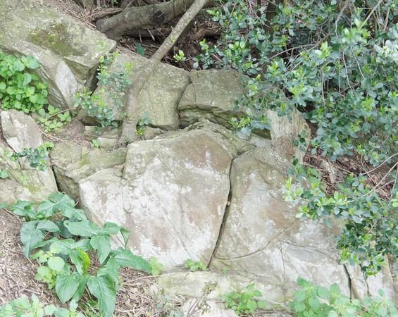Sur le flanc de l'isola Maggiore, des blocs rocheux empilés, à l'assise incertaine, soumis à l'action de tenaces et patientes racines...