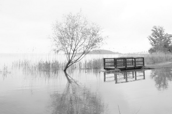 Au bord du Trasimène, un sentier inondé à San Feliciano.