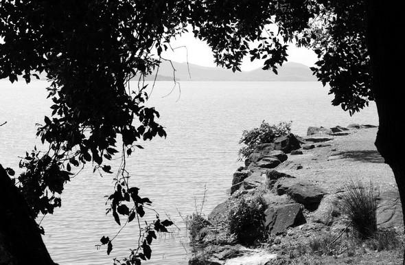 En quittant l'esplanade de San Francesco, un dernier regard en arrière vers la rive rocheuse de cette esplanade et, au loin, l'Isola Polvese   -   8/05/2014.