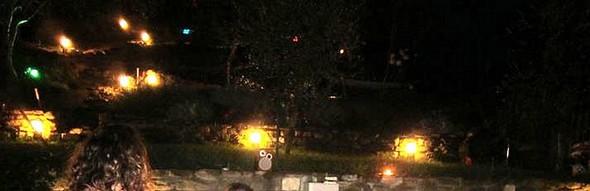 Una lunga serata nella magia del giardino di Sergio all'Isola Maggiore.