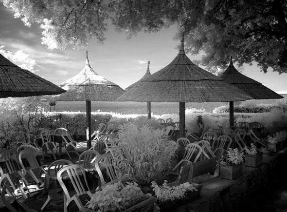 """Le jardin de """"Il Molo"""" situé à l'arrivée des traghetti à l'Isola Maggiore."""