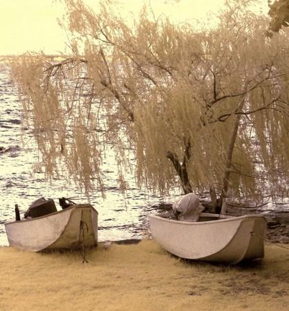 Barques à l'Isola Maggiore.