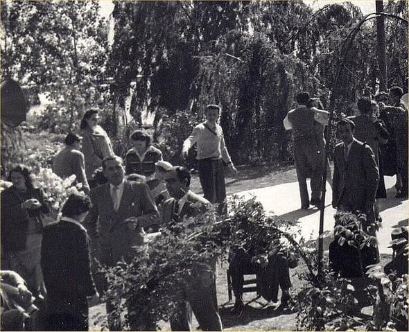 Ballo sulla rotonda, con orchestra in 1951.