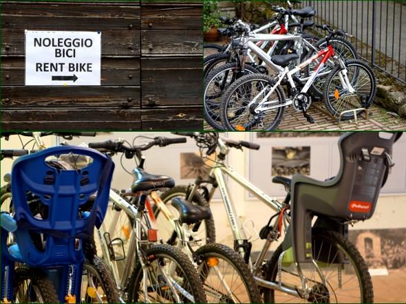 Noleggio di bici all' Isola Maggiore.