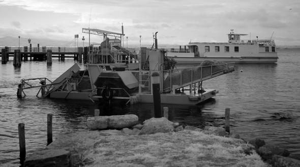 Chargée à ras-bord d'algues, la petite drague sort du port et va à la rencontre de la grande drague.