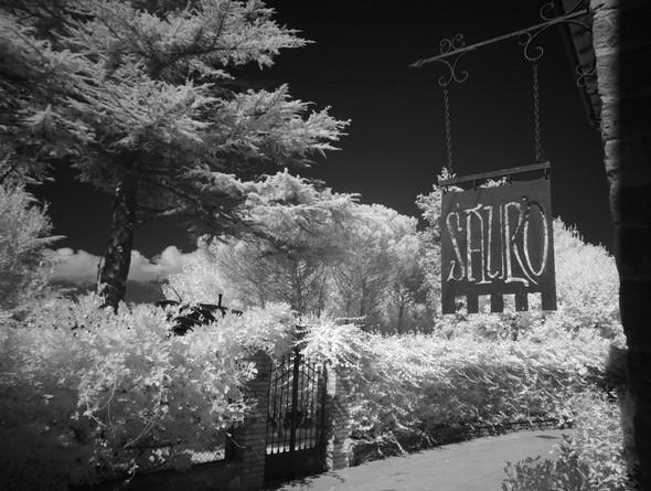 A l'extrémité nord de la via Guglielmi, l'enseigne du restaurant DA SAURO.