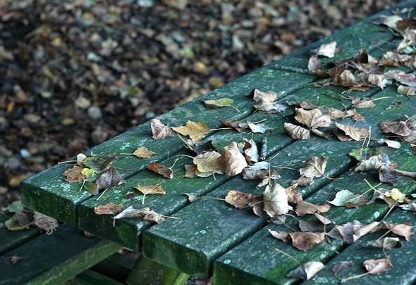 Au lungolago, les feuilles mortes s'offrent à nous partout, même sur les tables de pique-nique.