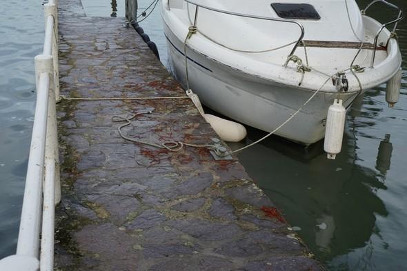Notre bateau est déjà fort haut par rapport au niveau de la partie supérieure de notre quai.