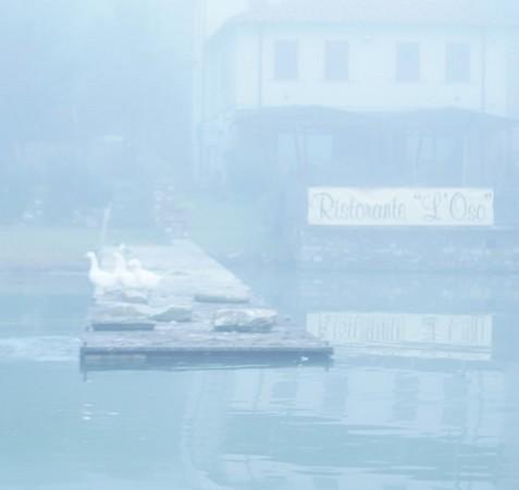 Cette photo montre combien il faut s'approcher près de la rive de l'Isola pour identifier quelque chose : ici, le restaurant L'Oso, son estacade et les oies.