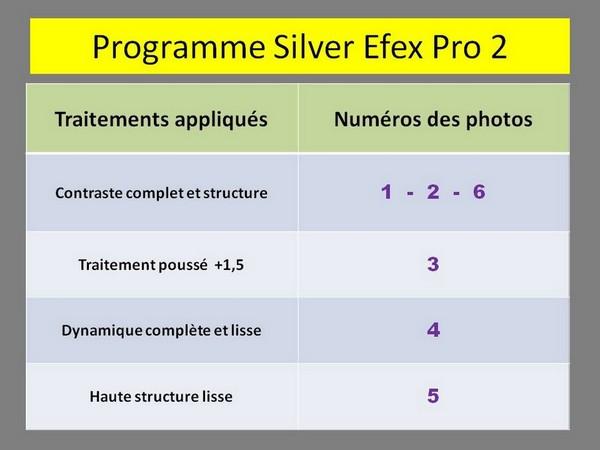 Les réglages préprogrammés choisis dans Silver Efex Pro 2 pour chaque photo.