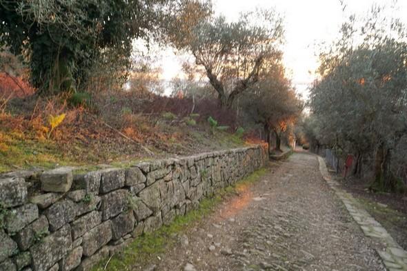 Arrivé au deux tiers de la strada San Michele Arcangelo, je me retourne et la photographie jusqu'en bas, donc dans l'axe du coucher de soleil (voir la carte ci-dessous)..