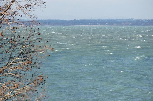 26 décembre 2014.En face de notre jardin à l'Isola Maggiore, les vagues provoquées par la Tramontane, se dirigent vers la gauche.