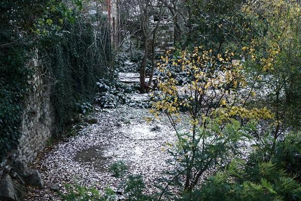 Matin du 30 décembre 2014. Une neige peu convaincante parsème le jardin voisin.