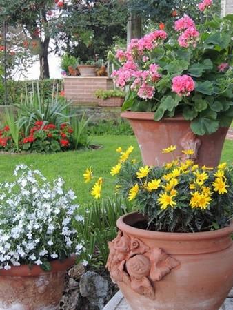 """Une passion pour les imposants vases en terre cuite. Ils marquent ici la """"frontière"""" entre la terrasse et la pelouse."""