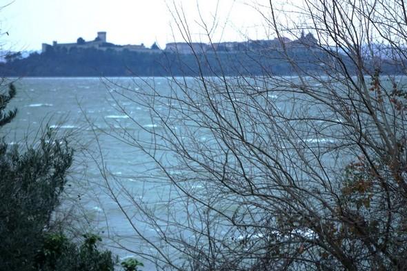 Vue depuis notre jardin de l' Isola Maggiore.  Au fond, la silhouette de Castiglione del lago.