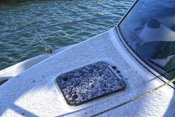 Même le capot de notre barque hors-bord arbore quelques cristaux de neige.