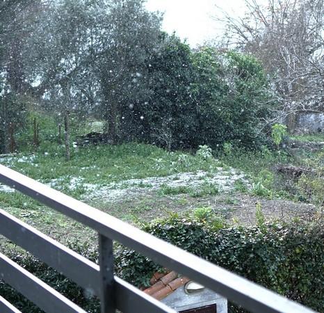 En fin de matinée, la neige a recommencé à tomber,  mais sans réelle conviction ni efficacité.