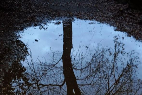 Tout le long du lungolago les nappes d'eau se succèdent et offrent des miroirs surréels de l'Isola Maggiore.