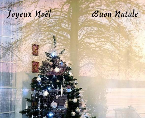 Prise du jardin, une photo de l'arbre de Noël dans notre salon, avec dans le reflet de la fenêtre un arbre de notre jardin, le lac Trasimène avec sa rive ouest, et une partie de notre bateau.