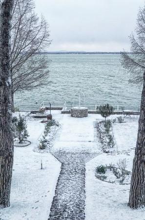 Vue du balcon de mon bureau. L'allée centrale de notre jardin et le lac Trasimène. 31 décembre 2014,  le matin.