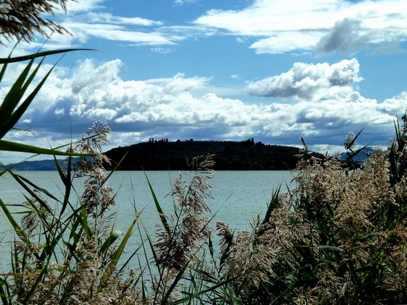 Isola Maggiore viewed from the shore of Tuoro-sul-Trasimeno.20 september 2011.© Jean Wilmotte.