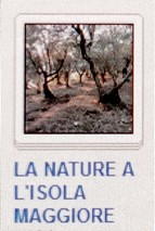 07 NATURE A L'ISOLA